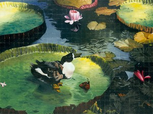 Duck on Lily Pad